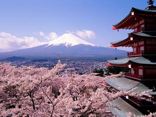 英国アンティークス・オフィシャルブログ-日本の春
