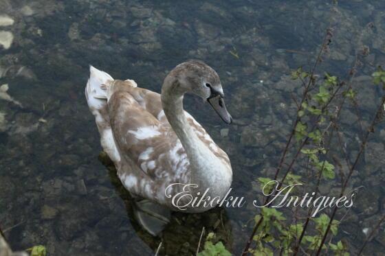 英国アンティークス・オフィシャルブログ-Swan