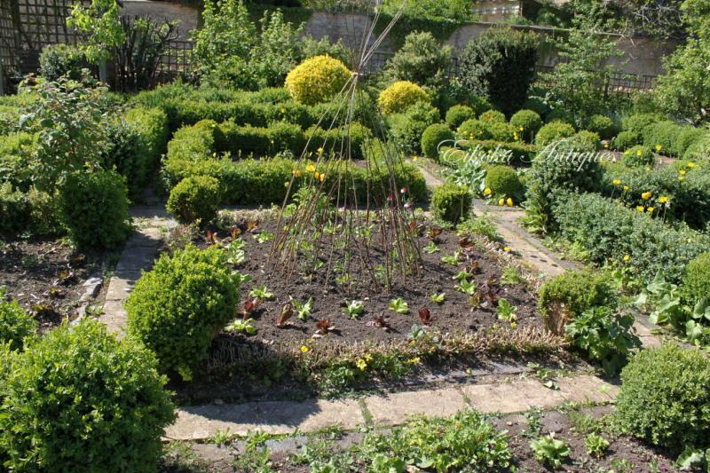 美しい国、英国のアンティーク&カントリーライフ-Barnsley House Garden